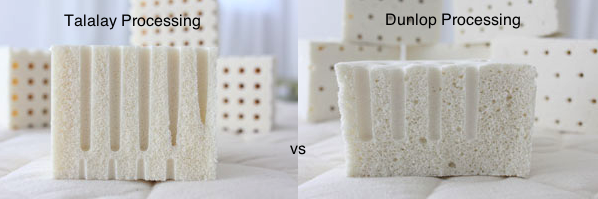 Talalay Vs Dunlop Vs Continuous Latex Processing Which Is